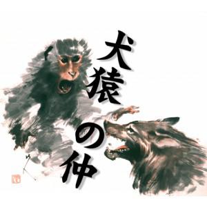 dog monkey idiom japanese