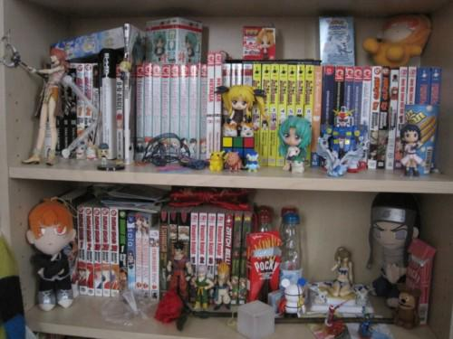 cluttered-manga-collection